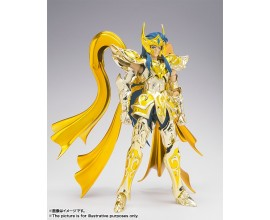 Saint Seiya Myth Cloth God Cloth - Camus Acquario