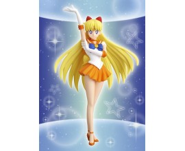 Sailor Venus Girls Memories